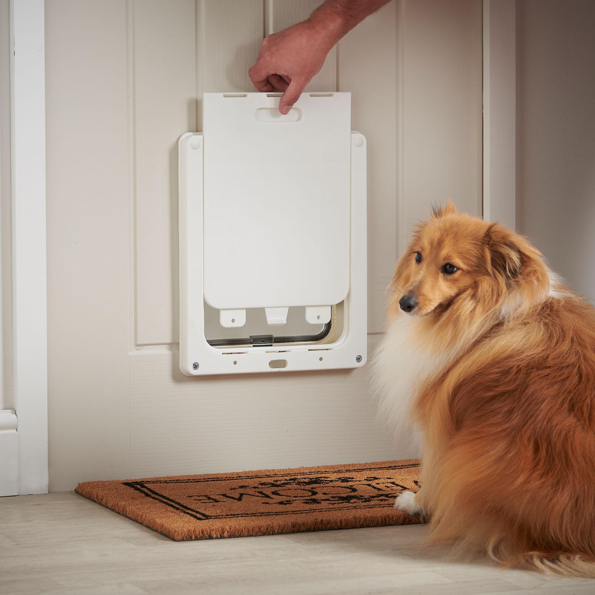 Milo Amp Misty Pet Flap Large 2 Way Clear Lockable Dog Amp Cat